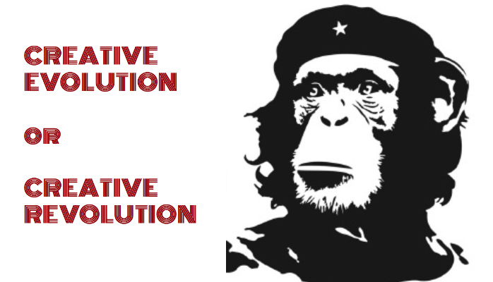 Creative Evolution or Creative Revolution?